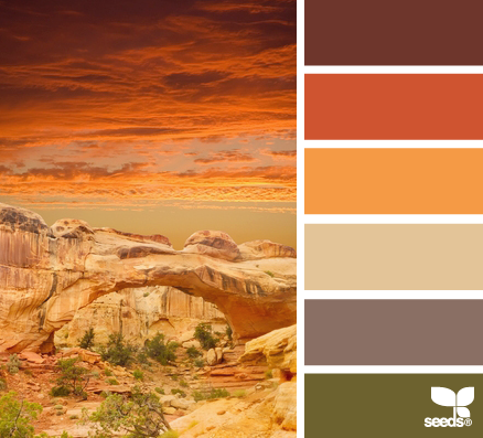 CanyonColor