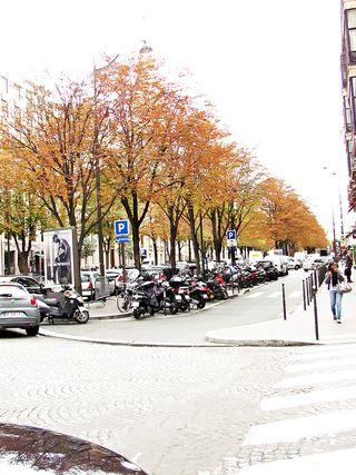 Fall city 3