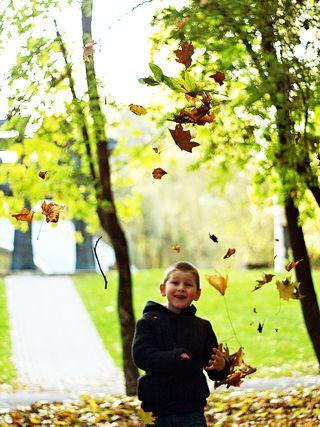 Fall kid
